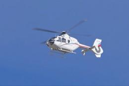 土岐のjunkoさんが、名古屋飛行場で撮影したユーロヘリ EC135T2の航空フォト(飛行機 写真・画像)