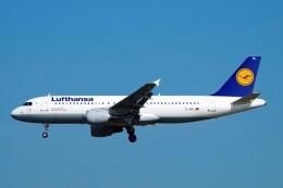 航空フォト:D-AIPL ルフトハンザドイツ航空 A320