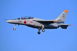 はるかのパパさんが、岐阜基地で撮影した航空自衛隊 T-4の航空フォト(飛行機 写真・画像)