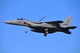 はるかのパパさんが、岐阜基地で撮影した航空自衛隊 F-15J Eagleの航空フォト(飛行機 写真・画像)