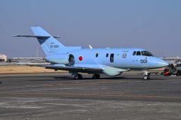 はるかのパパさんが、名古屋飛行場で撮影した航空自衛隊 U-125A (BAe-125-800SM)の航空フォト(飛行機 写真・画像)