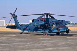はるかのパパさんが、名古屋飛行場で撮影した航空自衛隊 UH-60Jの航空フォト(飛行機 写真・画像)