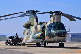 はるかのパパさんが、名古屋飛行場で撮影した航空自衛隊 CH-47J/LRの航空フォト(飛行機 写真・画像)