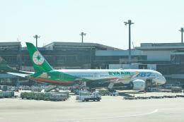 サイパンだ!さんが、成田国際空港で撮影したエバー航空 787-9の航空フォト(飛行機 写真・画像)