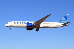 Shin-chaさんが、成田国際空港で撮影したユナイテッド航空 787-9の航空フォト(飛行機 写真・画像)