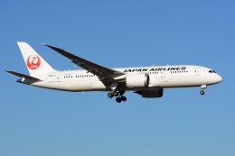 航空フォト:JA827J 日本航空 787-8 Dreamliner