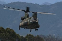 ko_zo.k@KMJさんが、熊本空港で撮影した陸上自衛隊 CH-47JAの航空フォト(飛行機 写真・画像)