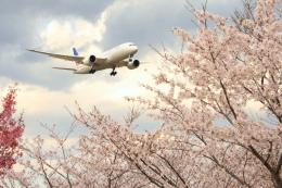 Hiro-hiroさんが、成田国際空港で撮影したユナイテッド航空 787-8 Dreamlinerの航空フォト(飛行機 写真・画像)