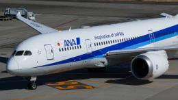 Bluewingさんが、羽田空港で撮影した全日空 787-8 Dreamlinerの航空フォト(飛行機 写真・画像)
