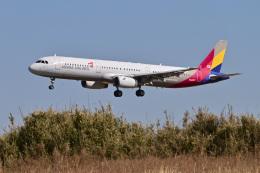 パンダさんが、成田国際空港で撮影したアシアナ航空 A321-231の航空フォト(飛行機 写真・画像)