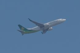 木人さんが、成田国際空港で撮影した春秋航空日本 737-81Dの航空フォト(飛行機 写真・画像)