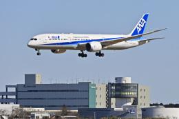 パンダさんが、成田国際空港で撮影した全日空 787-9の航空フォト(飛行機 写真・画像)