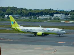 kiyo hさんが、成田国際空港で撮影したジンエアー 737-8SHの航空フォト(飛行機 写真・画像)