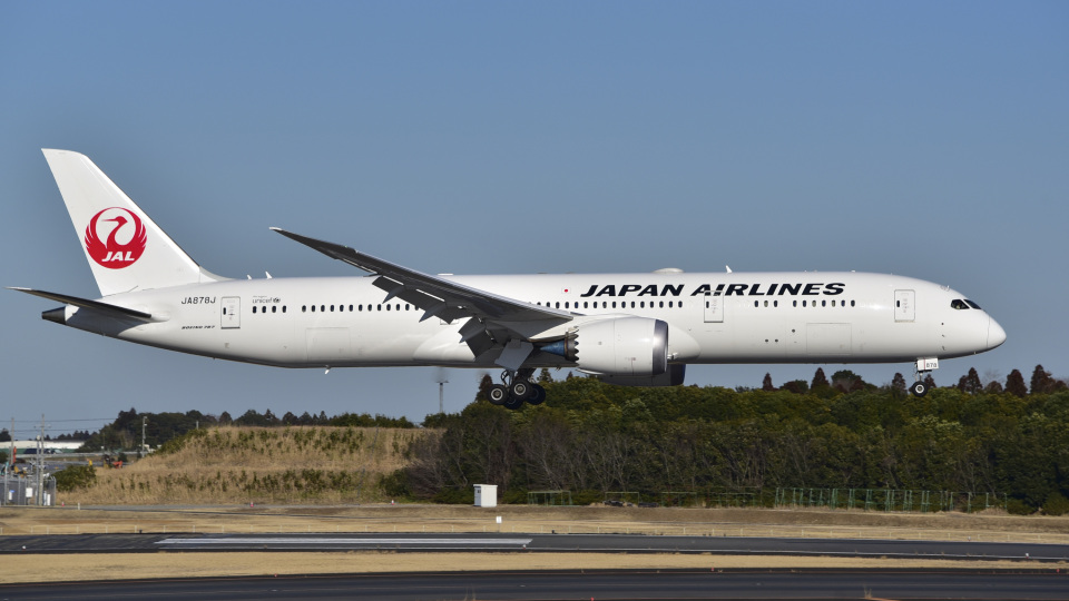 パンダさんの日本航空 Boeing 787-9 (JA878J) 航空フォト