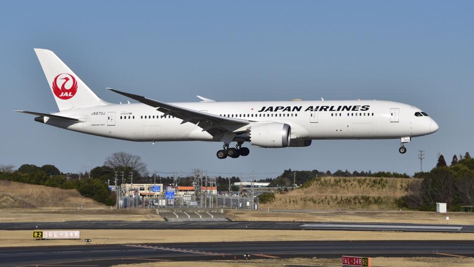 パンダさんの日本航空 Boeing 787-9 (JA870J) 航空フォト