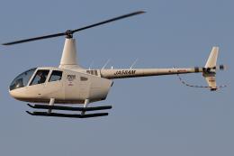 A.Tさんが、八尾空港で撮影した大阪航空 R66 Turbineの航空フォト(飛行機 写真・画像)