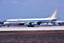 パール大山さんが、マイアミ国際空港で撮影したアンデス DC-8-32(F)の航空フォト(飛行機 写真・画像)