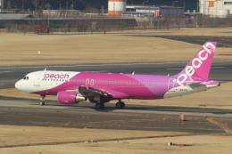 airdrugさんが、成田国際空港で撮影したピーチ A320-214の航空フォト(飛行機 写真・画像)