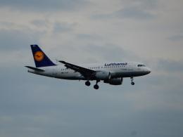 航空フォト:D-AIBD ルフトハンザドイツ航空 A319