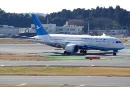 050813さんが、成田国際空港で撮影した厦門航空 787-8 Dreamlinerの航空フォト(飛行機 写真・画像)