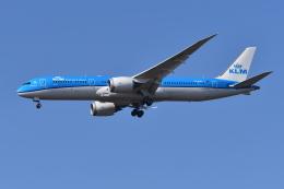 Deepさんが、成田国際空港で撮影したKLMオランダ航空 787-9の航空フォト(飛行機 写真・画像)