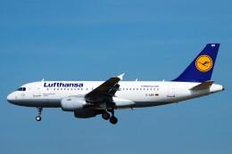 ちっとろむさんが、フランクフルト国際空港で撮影したルフトハンザドイツ航空 A319-112の航空フォト(飛行機 写真・画像)