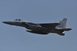 みすちゃんさんが、小松空港で撮影した航空自衛隊 F-15J Eagleの航空フォト(飛行機 写真・画像)