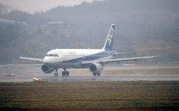 LEVEL789さんが、岡山空港で撮影した全日空 A320-211の航空フォト(飛行機 写真・画像)
