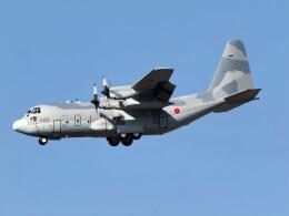 jp arrowさんが、岐阜基地で撮影した航空自衛隊 C-130H Herculesの航空フォト(飛行機 写真・画像)