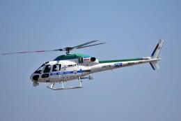 MSN/PFさんが、名古屋飛行場で撮影した中日本航空 AS355Nの航空フォト(飛行機 写真・画像)