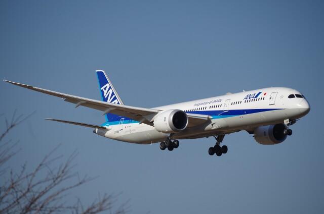 航空フォト:JA896A 全日空