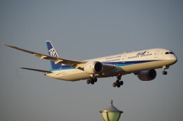 zibaさんが、成田国際空港で撮影した全日空 787-10の航空フォト(飛行機 写真・画像)