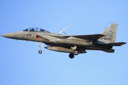 ちゅういちさんが、岐阜基地で撮影した航空自衛隊 F-15DJ Eagleの航空フォト(飛行機 写真・画像)