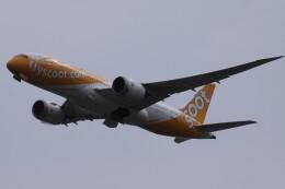 Mr.boneさんが、成田国際空港で撮影したスクート 787-8 Dreamlinerの航空フォト(飛行機 写真・画像)