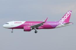 kunimi5007さんが、仙台空港で撮影したピーチ A320-251Nの航空フォト(飛行機 写真・画像)