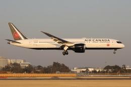 sky-spotterさんが、成田国際空港で撮影したエア・カナダ 787-9の航空フォト(飛行機 写真・画像)