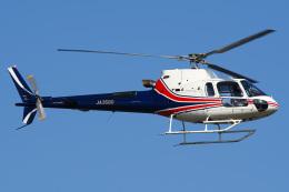 さんごーさんが、東京ヘリポートで撮影したノエビア AS350B3 Ecureuilの航空フォト(飛行機 写真・画像)