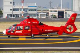 さんごーさんが、東京ヘリポートで撮影した東京消防庁航空隊 AS365N3 Dauphin 2の航空フォト(飛行機 写真・画像)