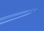 ふじいあきらさんが、広島空港で撮影したエバー航空 747-45EMの航空フォト(写真)
