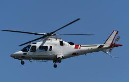 チャーリーマイクさんが、東京ヘリポートで撮影した鹿児島国際航空 A109E Powerの航空フォト(飛行機 写真・画像)