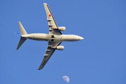 飛行機ゆうちゃんさんが、羽田空港で撮影した全日空 737-781の航空フォト(飛行機 写真・画像)