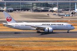 やつはしさんが、羽田空港で撮影した日本航空 787-8 Dreamlinerの航空フォト(飛行機 写真・画像)