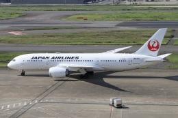 kan787allさんが、羽田空港で撮影した日本航空 787-8 Dreamlinerの航空フォト(飛行機 写真・画像)