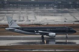 PIRORINGさんが、羽田空港で撮影したスターフライヤー A320-214の航空フォト(飛行機 写真・画像)