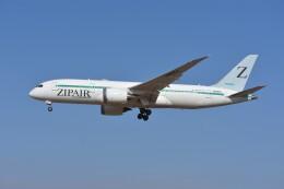kozikoziさんが、成田国際空港で撮影したZIPAIR 787-8 Dreamlinerの航空フォト(飛行機 写真・画像)