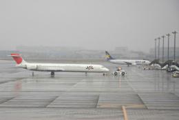 inyoさんが、羽田空港で撮影した日本航空 MD-90-30の航空フォト(飛行機 写真・画像)