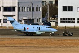 鈴鹿@風さんが、名古屋飛行場で撮影した航空自衛隊 U-125A(Hawker 800)の航空フォト(飛行機 写真・画像)