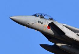 鈴鹿@風さんが、名古屋飛行場で撮影した航空自衛隊 F-15DJ Eagleの航空フォト(飛行機 写真・画像)