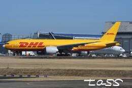tassさんが、成田国際空港で撮影したサザン・エア 777-Fの航空フォト(飛行機 写真・画像)
