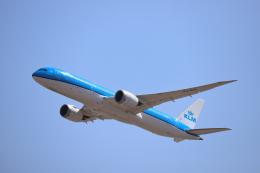 赤ちんさんが、成田国際空港で撮影したKLMオランダ航空 787-9の航空フォト(飛行機 写真・画像)